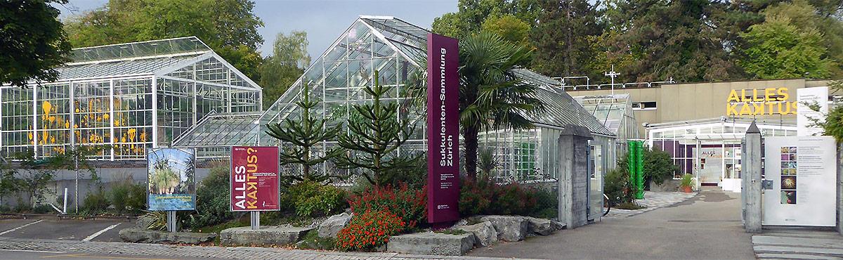 Förderverein der Sukkulenten Sammlung Zürich Willkommen beim Förderverein der Sukkulenten  ~ 07053851_Sukkulenten Bestellen Schweiz